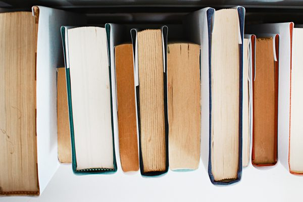 bible study recommended reading